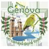 Génova02